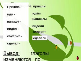 Вывод: глаголы изменяются по числам Пришла - иду - напишу - видел - смотрит -