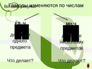 Глаголы изменяются по числам ЕД. Ч. действие одного предмета Что делает? МН.Ч