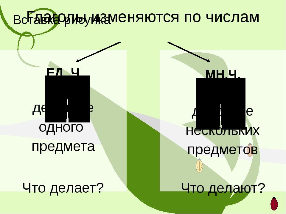 Глаголы изменяются по числам ЕД. Ч. действие одного предмета Что делает? МН.Ч...