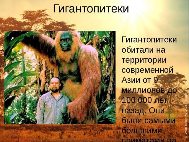 Гигантопитеки Гигантопитеки обитали на территории современной Азии от 9 милли...