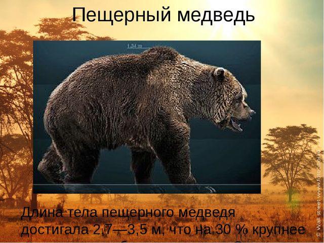 Пещерный медведь Длина тела пещерного медведя достигала 2,7—3,5м, что на 30...