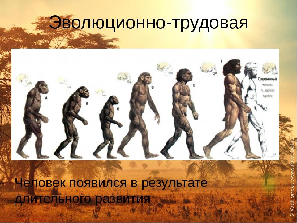Эволюционно-трудовая Человек появился в результате длительного развития