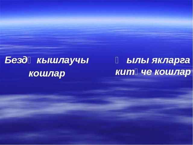 Җылы якларга китүче кошлар Бездә кышлаучы кошлар