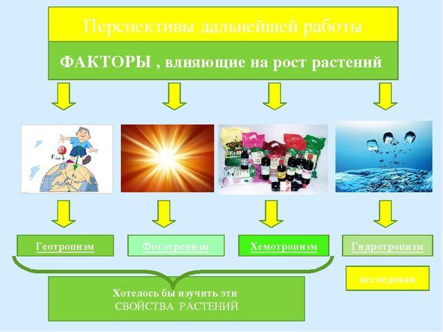 ФАКТОРЫ , влияющие на рост растений Геотропизм Фототропизм Гидротропизм Хемот...