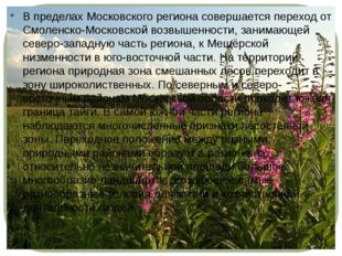 В пределах Московского региона совершается переход от Смоленско-Московской во