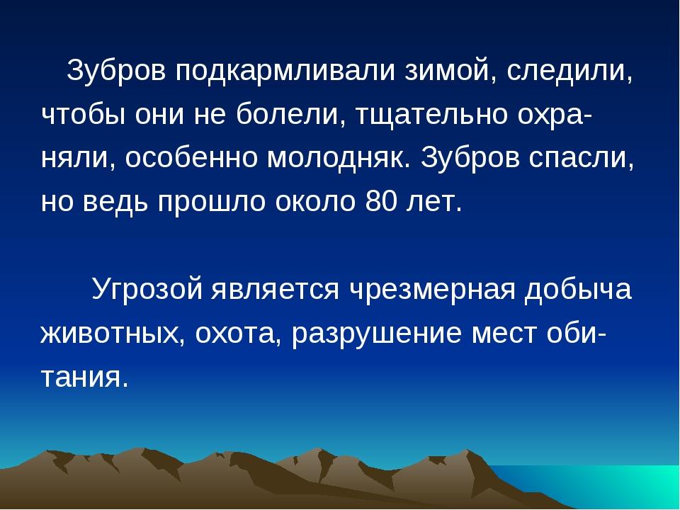 Зубров подкармливали зимой, следили, чтобы они не болели, тщательно охра- ня...