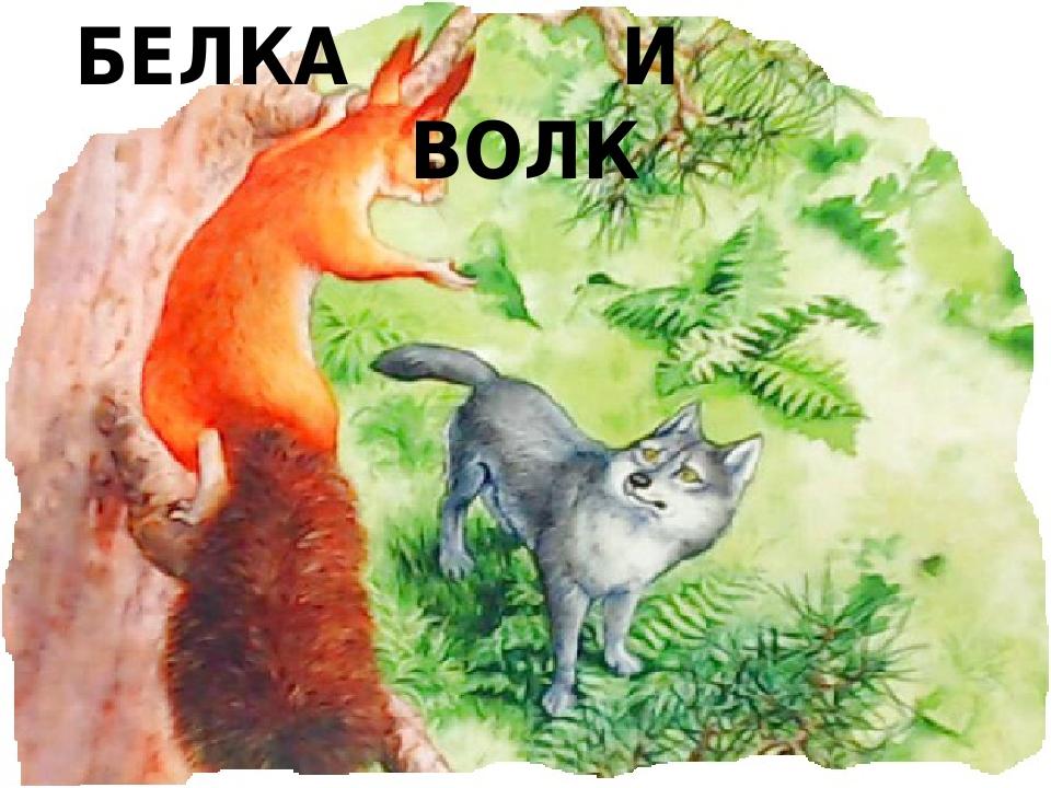 БЕЛКА И ВОЛК