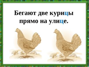 Бегают две курицы прямо на улице.