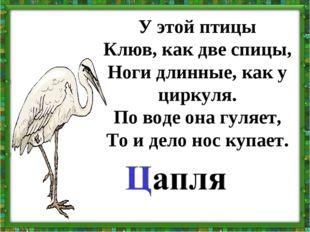 У этой птицы Клюв, как две спицы, Ноги длинные, как у циркуля. По воде она гу