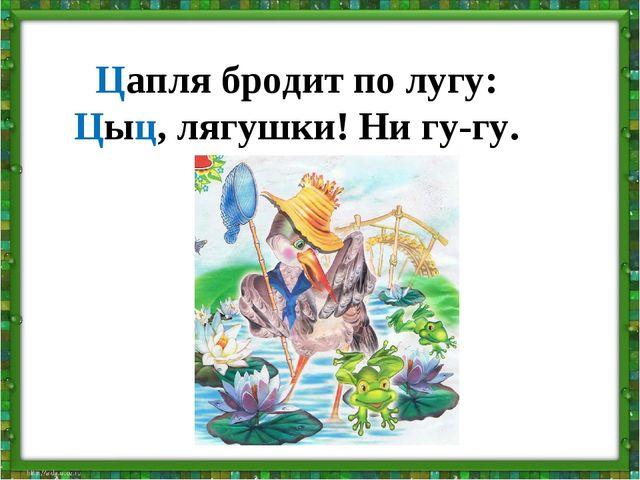 Цапля бродит по лугу: Цыц, лягушки! Ни гу-гу.