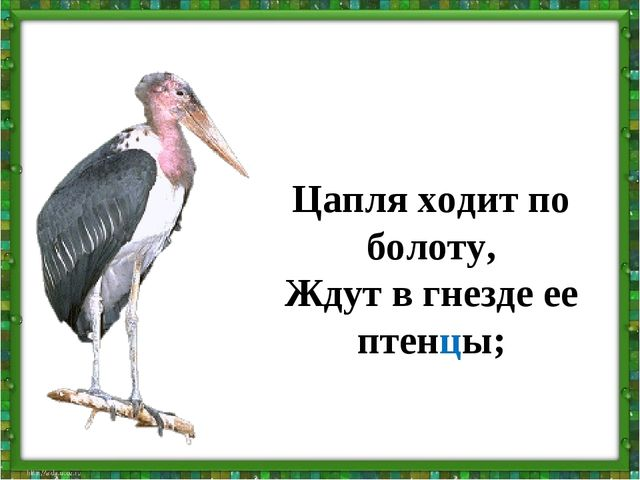 Цапля ходит по болоту, Ждут в гнезде ее птенцы;