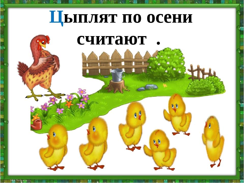 Цыплят по осени считают .