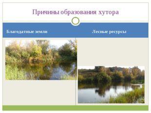 Благодатные земли Лесные ресурсы Причины образования хутора
