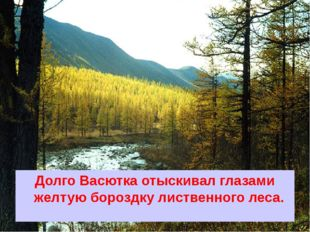 Долго Васютка отыскивал глазами желтую бороздку лиственного леса.