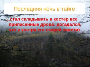 Последняя ночь в тайге …стал складывать в костер все припасенные дрова: догад
