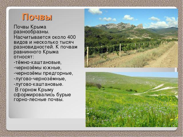 Почвы Почвы Крыма разнообразны. Насчитывается около 400 видов и несколько тыс...