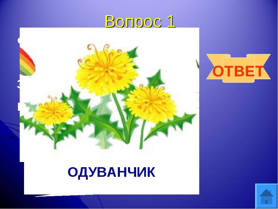 Вопрос 1 Горел в траве росистой, затем померк, потух и превратился в пух. ОТВ...