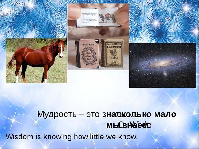 Мудрость – это знать, … O. Wilde насколько мало мы знаем. Wisdom is...