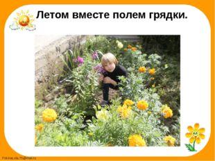 Летом вместе полем грядки. FokinaLida.75@mail.ru