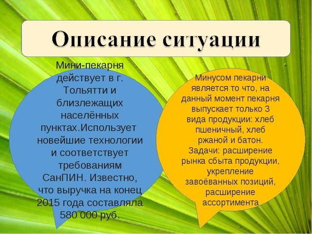 Мини-пекарня действует в г. Тольятти и близлежащих населённых пунктах.Использ...