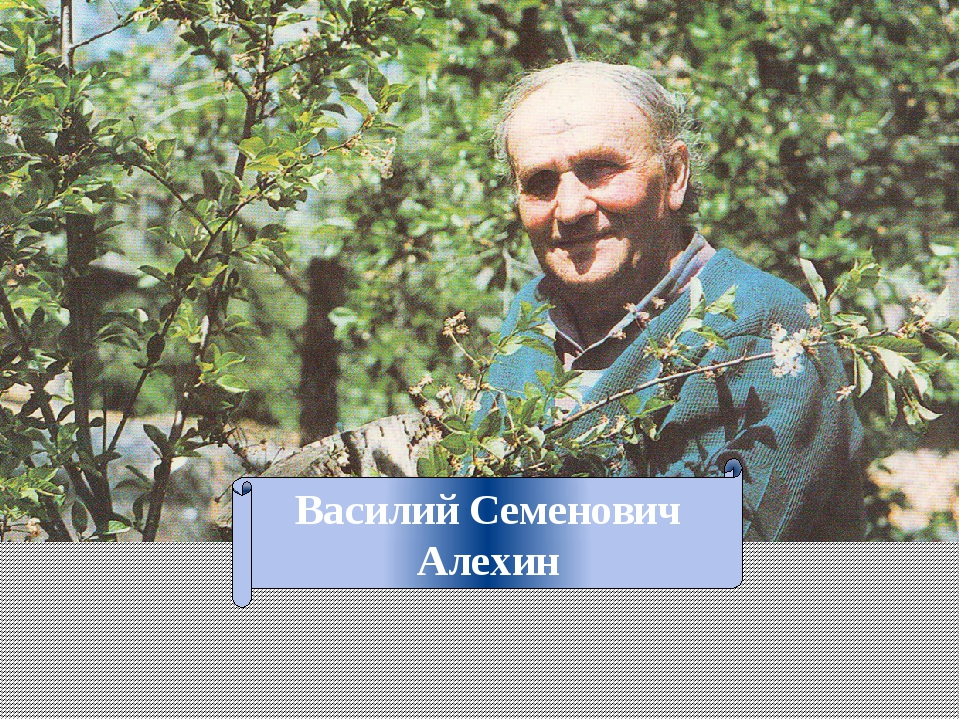 Василий Семенович Алехин