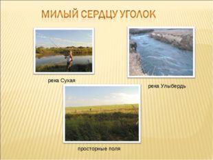 река Сухая река Улыбердь просторные поля