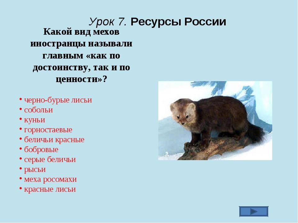 Урок 7. Ресурсы России Какой вид мехов иностранцы называли главным «как по д...