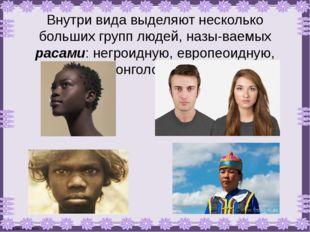 Внутри вида выделяют несколько больших групп людей, называемых расами: негро