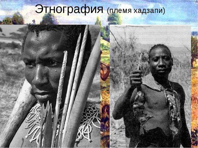 Этнография (племя хадзапи)