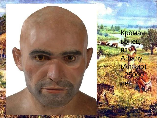 Кроманьонец из Афалу (Алжир). 25000 лет