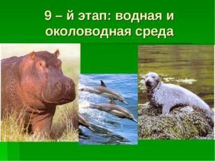 9 – й этап: водная и околоводная среда