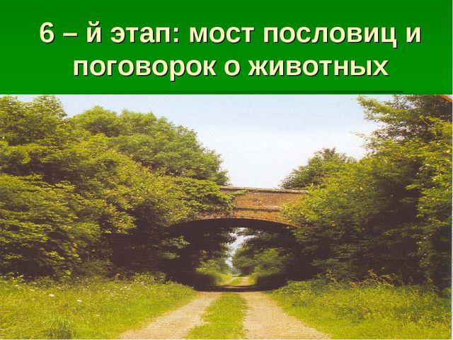 6 – й этап: мост пословиц и поговорок о животных