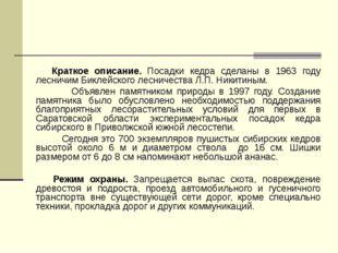 Краткое описание. Посадки кедра сделаны в 1963 году лесничим Биклейского лес