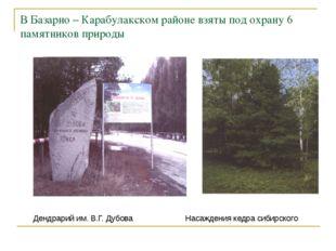 В Базарно – Карабулакском районе взяты под охрану 6 памятников природы Дендра