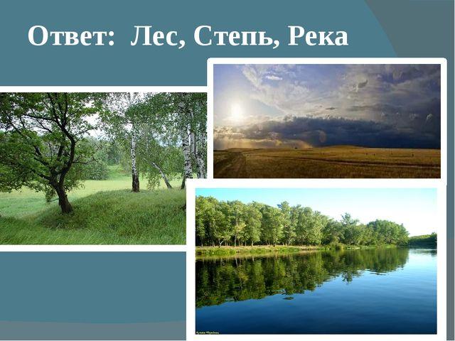 Ответ: Лес, Степь, Река