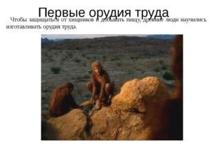 Первые орудия труда Чтобы защищаться от хищников и добывать пищу, древние люд