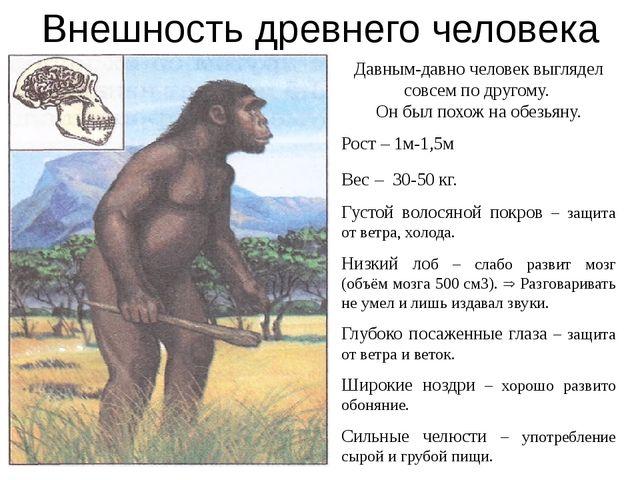 Внешность древнего человека Давным-давно человек выглядел совсем по другому....
