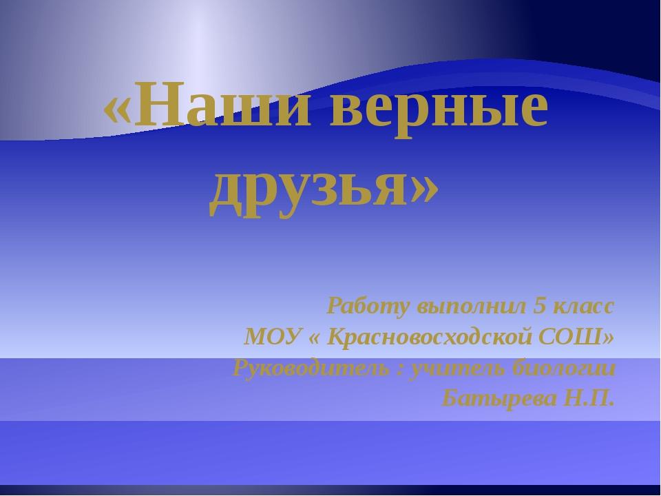 «Наши верные друзья» Работу выполнил 5 класс МОУ « Красновосходской СОШ» Руко...