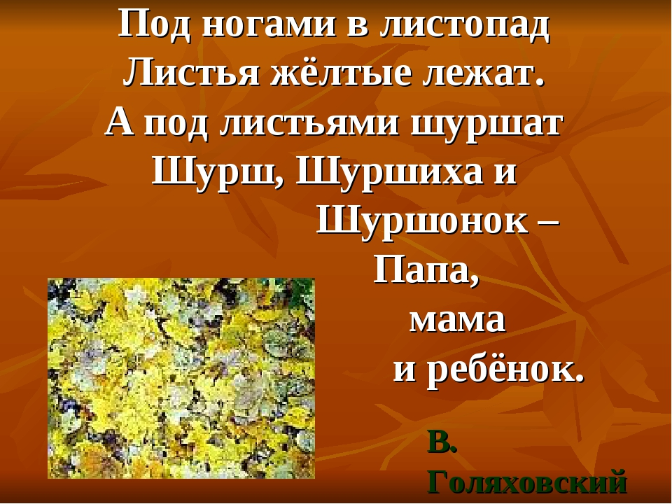 Под ногами в листопад Листья жёлтые лежат. А под листьями шуршат Шурш, Шурших...