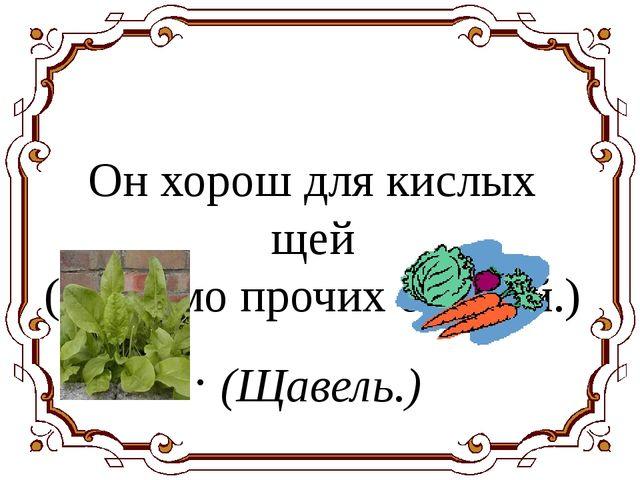 Он хорош для кислых щей (Помимо прочих овощей.) (Щавель.)