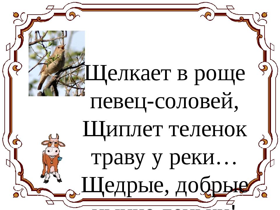 Щелкает в роще певец-соловей, Щиплет теленок траву у реки… Щедрые, добрые ны...
