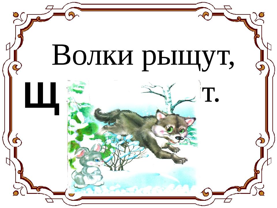 Волки рыщут, пищу ищут. Щ