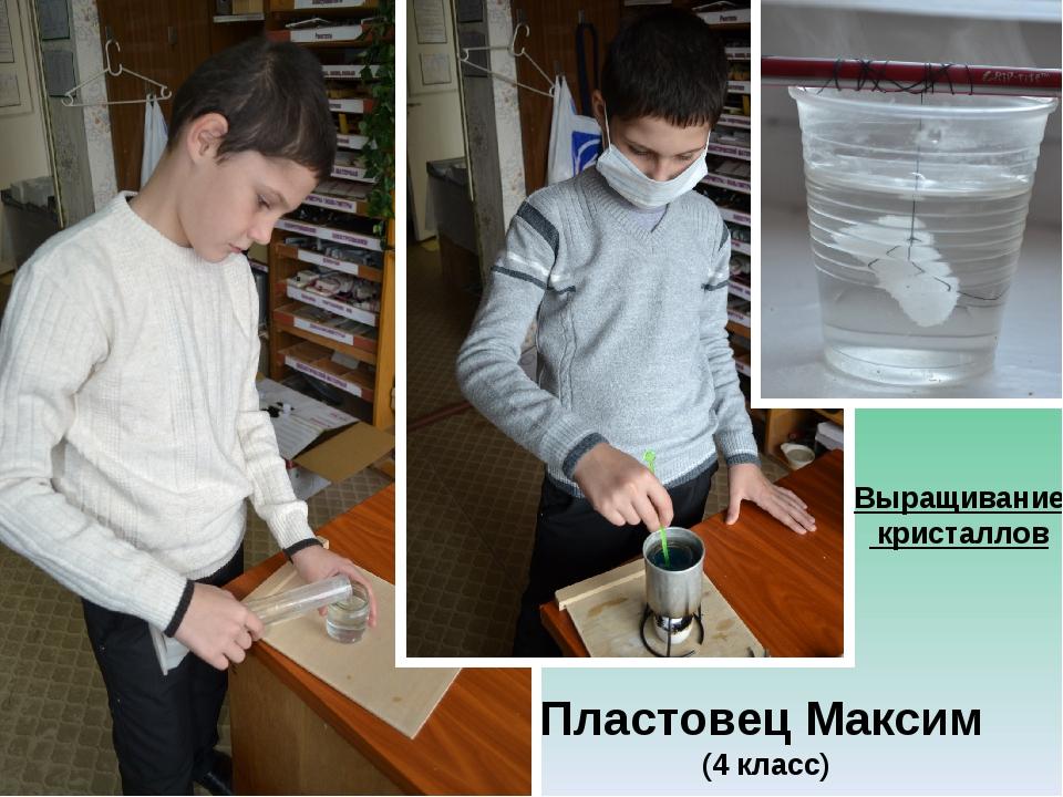 Пластовец Максим (4 класс) Выращивание кристаллов