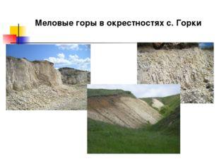 Меловые горы в окрестностях с. Горки