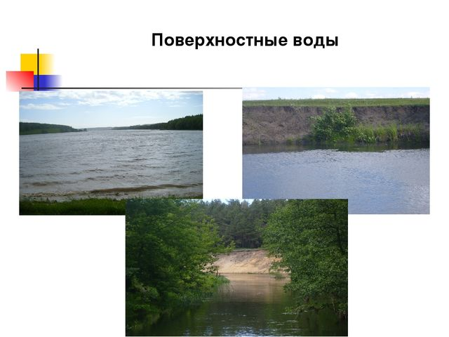 Поверхностные воды