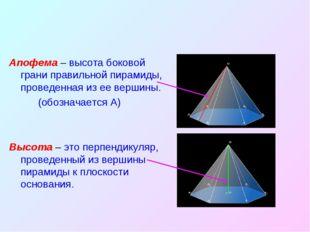 Апофема – высота боковой грани правильной пирамиды, проведенная из ее вершины