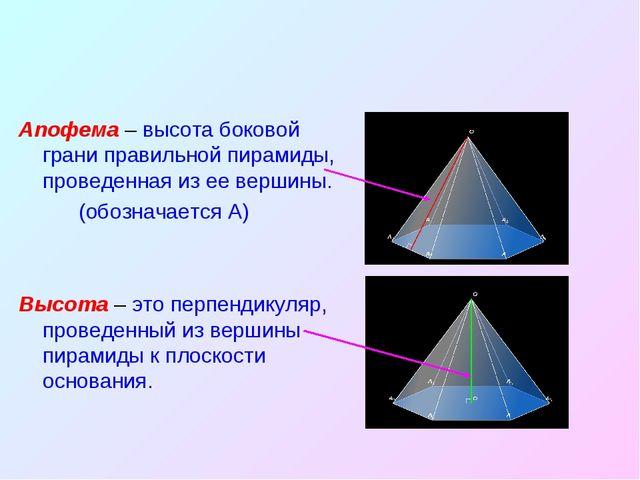 Апофема – высота боковой грани правильной пирамиды, проведенная из ее вершины...