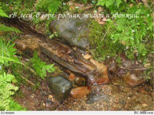 «В лесу, в горе, родник живой и звонкий…»