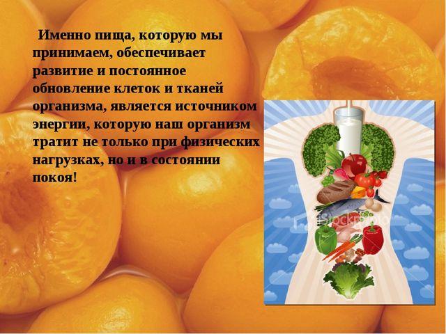 Именно пища, которую мы принимаем, обеспечивает развитие и постоянное обновл...
