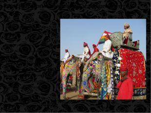 Индийские цари сами были из касты знатных воинов и окружали себя людьми из эт